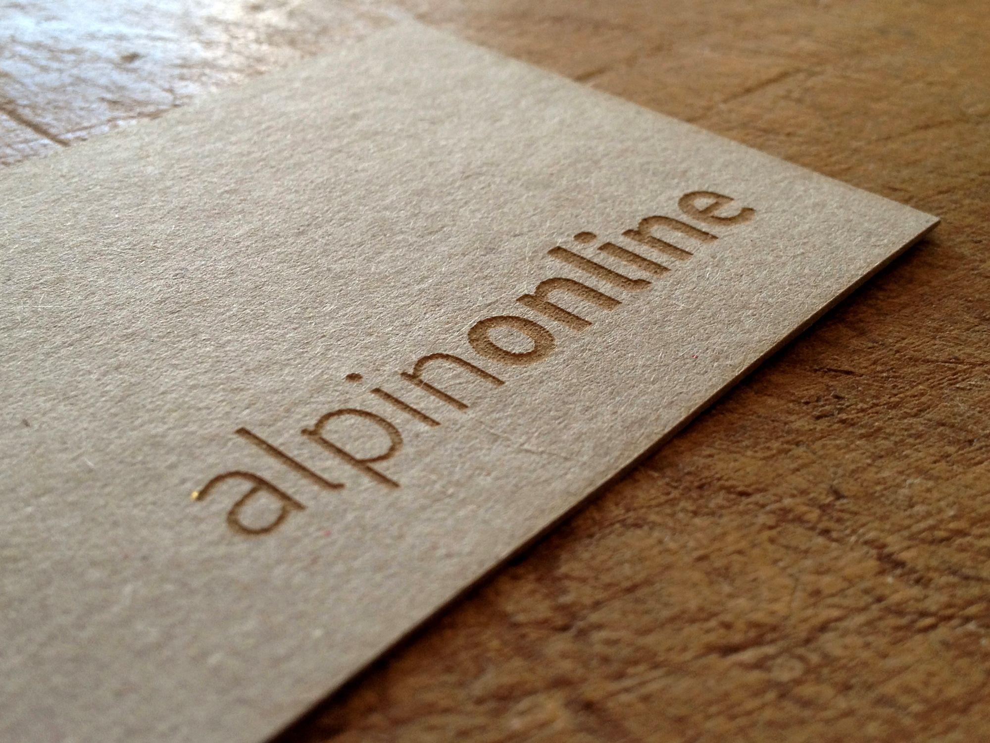 Logo und Geschäftsausstattung für alpinonline