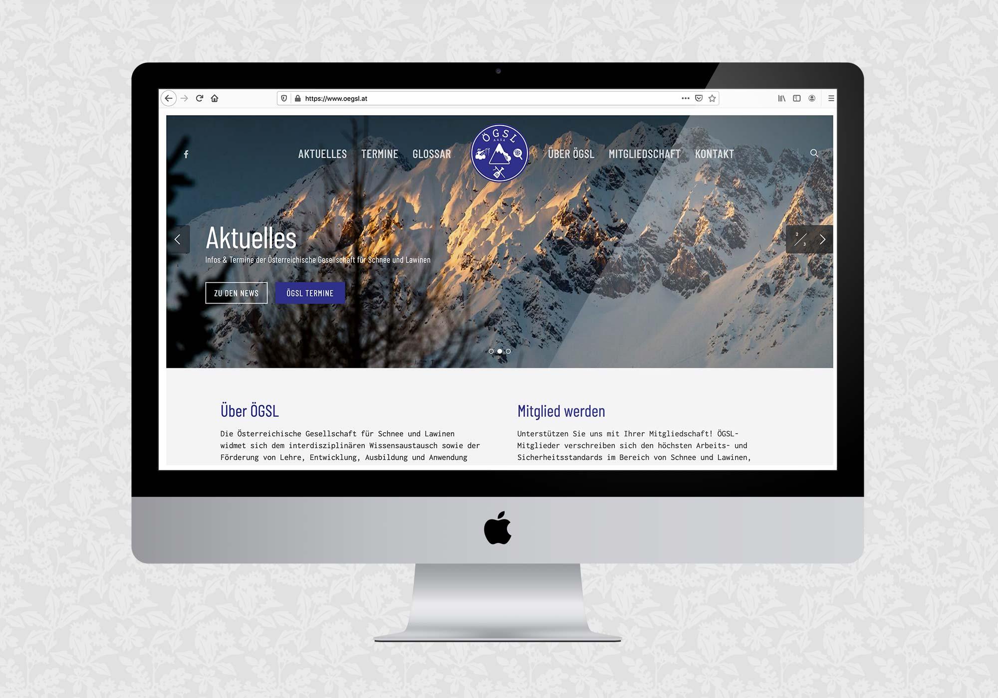 Website für ÖGSL   © fein fein